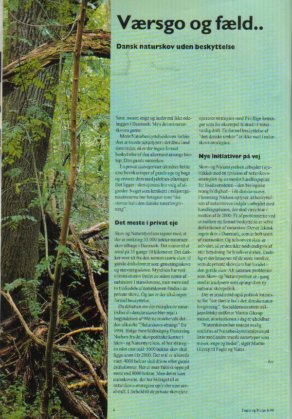 DOF-opfordring til at beskytte naturskov