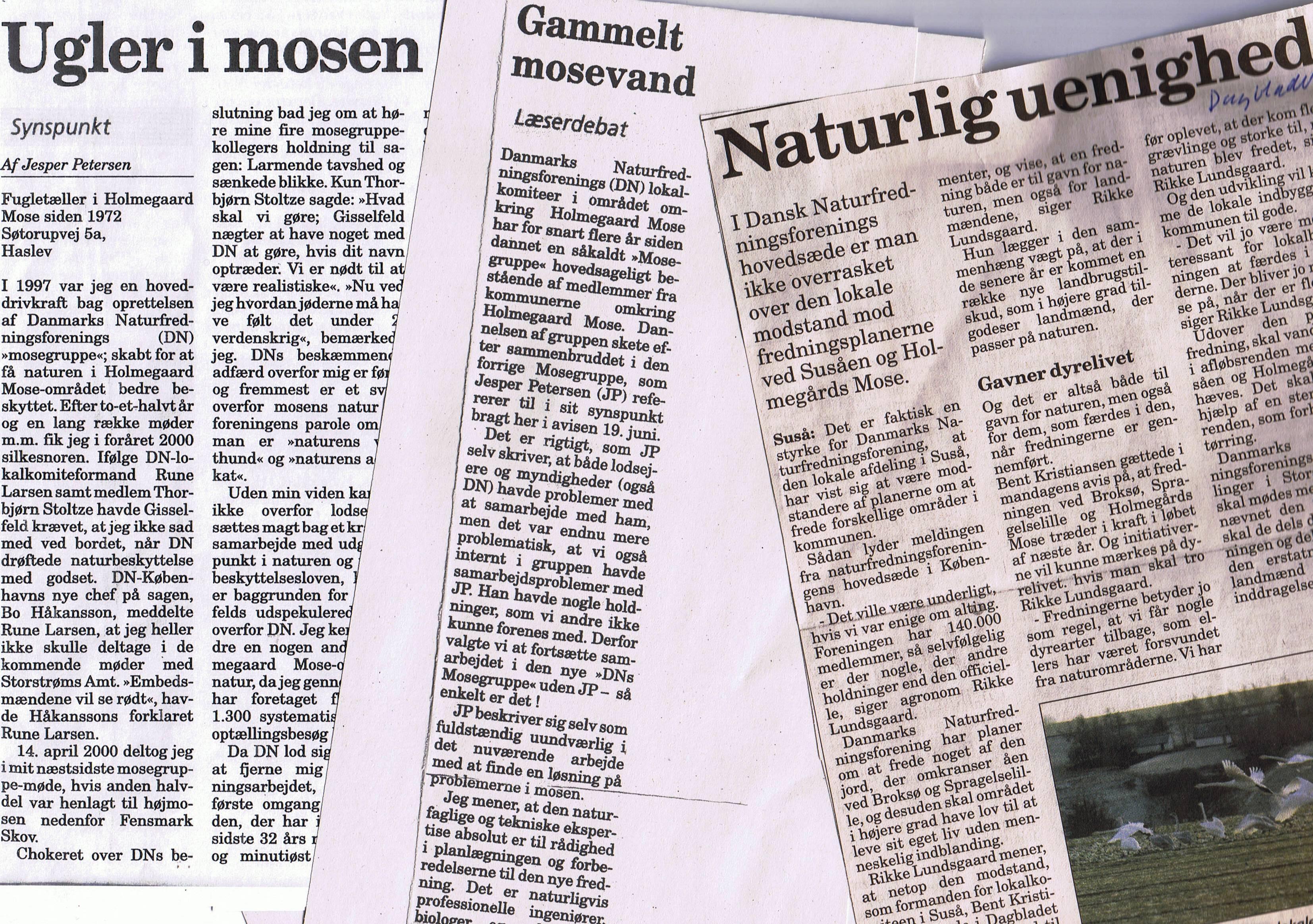 avisudklip fra 2004